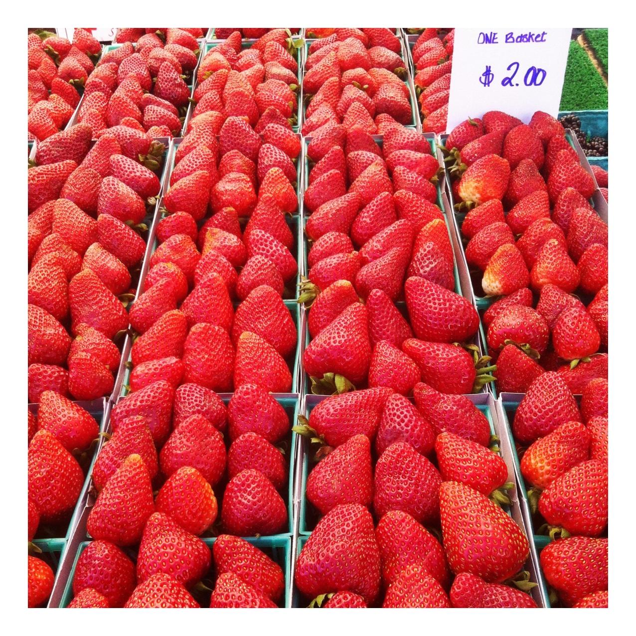 Strawberries @ Melrose Sunday Farmer's Market